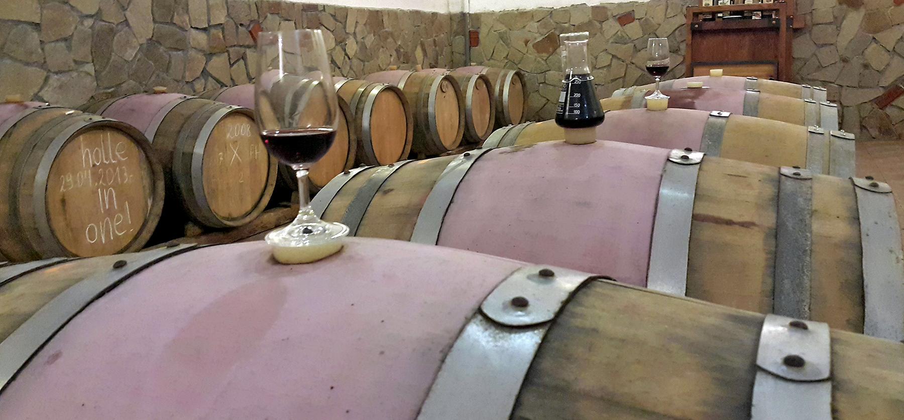 "Усмихнат дегустатор пред две винени бъчви с чаша червено вино ""Кьосев"""